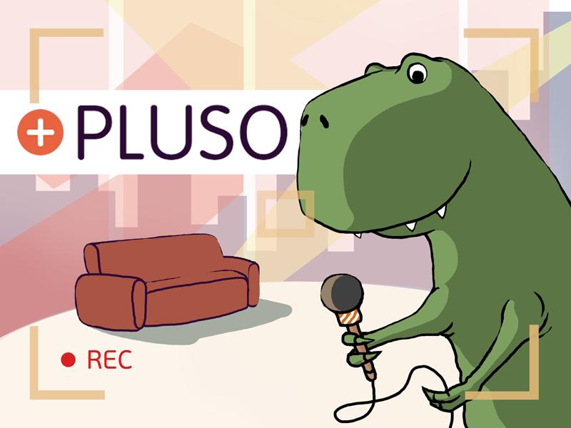 Легкий старт: Pluso