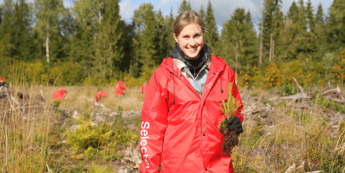 «Зеленый Selectel»: как мы высадили 20 000 деревьев